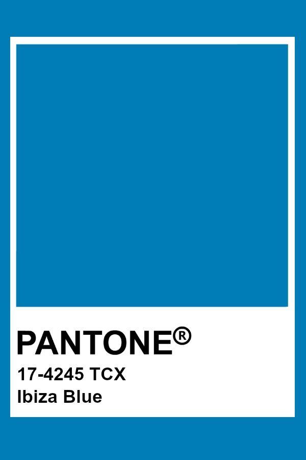 цвет синяя ибица